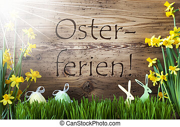 Sunny Egg And Bunny, Gras, Osterferien Means Easter Holidays...