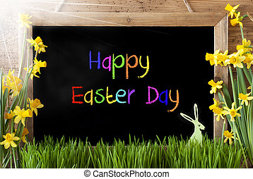 Sunny Narcissus, Bunny, Colorful Text Happy Easter Day -...