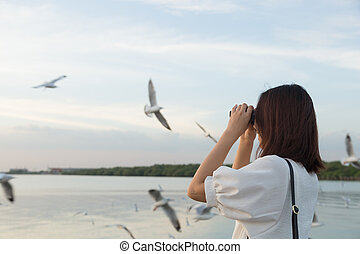 woman watching bird watching by the sea. - woman watching...