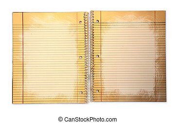 Dirty Lined School Paper in a Binder - Distressed Lined...