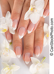 Beautiful woman's nails, french manicure.