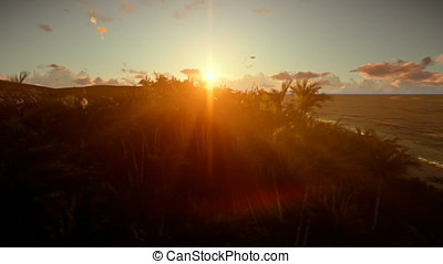 Tropical island with palm trees against beautiful sunset