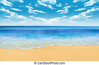 beach - Gorgeous Beach in Summertime
