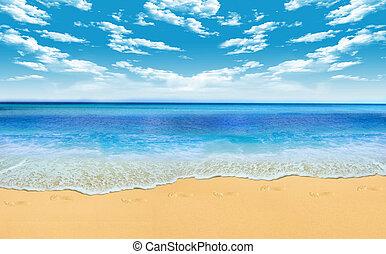 beach - Gorgeous Beach in Summertime
