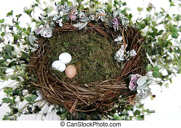 Nest Fantasy Photo Background for Digital Manipulation