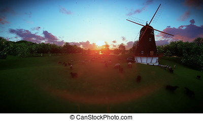 Sheeps and windmill on green meadow, sunset