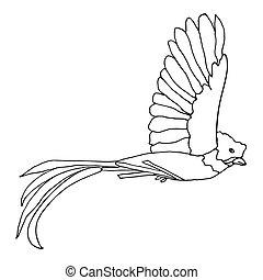 Quetzal Bird flying. Vector resplendent Quetzal. Hand drawn...