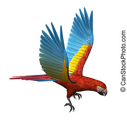 Scarlet Macaw Flying - 3D render