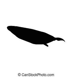 Cachalot Or Sperm Whale Silhouette Concept - Cachalot or...