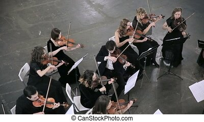 Musician playing classic music in the orchestra