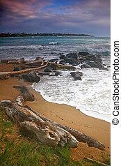 Vertical Landscape of a Beach in Hawaii