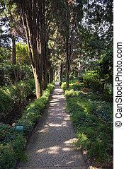 Alley in the public garden of Villa San Michele on Capri...