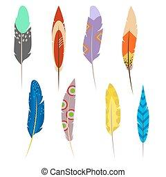 Feathers of exotic birds set isolated on white background.