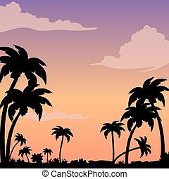 Sunset on a tropical island against a silhouette of palm trees. Evening background image with clouds.