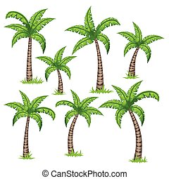 Set of different tropical palm trees