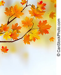 Autumn falling leafs - Autumn falling leaf against a out of...