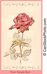 vintage greeting card with rose - vintage greeting card with...