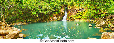Cascade Chamouze waterfall. Mauritius. Panorama - Scenic...