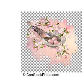 Spring Apple Blossom and Bird - Vector spring apple blossom...