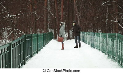 Young Adult Couple Walking on a Snowy Day in Forest full HD....