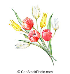 Watercolor mimosa and tulip bouquet - Beautiful bouquet with...
