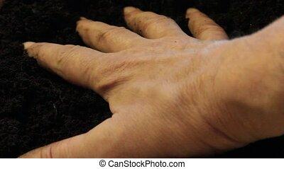 Earth in hand - Farmer holding soil i hands. Man hands...