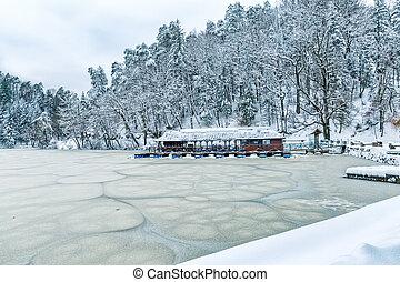 Frozen lake in Zagorje, Croatia - Frozen lake near the...