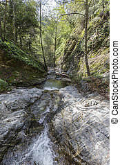 Eaton Canyon Creek in the San Gabriel Mountains