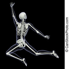 Skeleton in Motion - Woman Leaping - 3D render - Back View