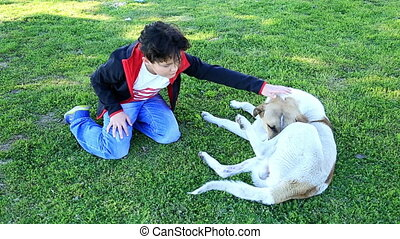 Cute little boy and pet dog outdoors - Child playing with...