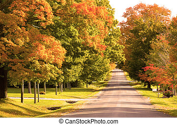 Fall day on rural road - Fall foliage on maple trees down a...