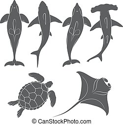 Set of images with marine animals. Vector black and white...