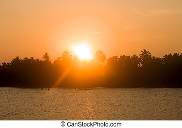 Sunset on Indian river, sun in crowns of palms