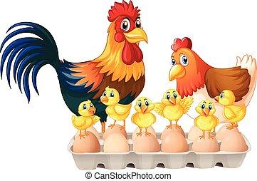 Æske, Åg, Karton, høns