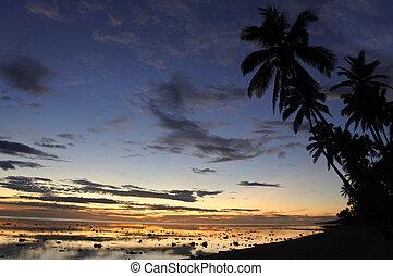 corallo, costa, tramonto, Figi, paesaggio, vista