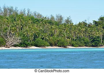 remoto, isola, Levu, tropicale, nanuya, spiaggia, Figi,...