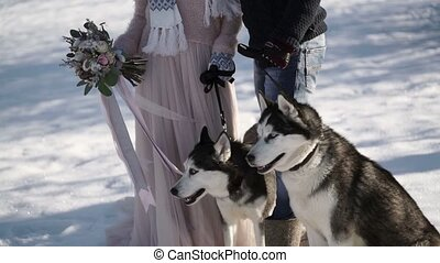 Man and woman with two husky dogs at winter sunny day