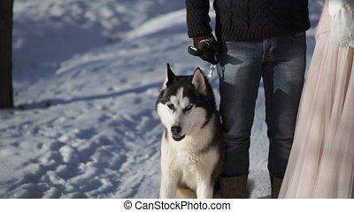 Man and woman with husky dog at winter sunny day