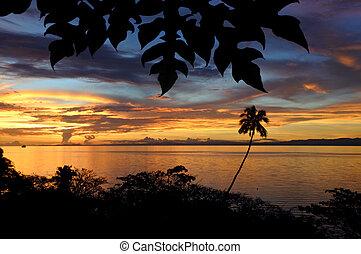 Landscape of a tropical beach in Vanua Levu Island Fiji -...