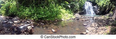 savusavu,  vuadomo, cascata, Figi, paesaggio