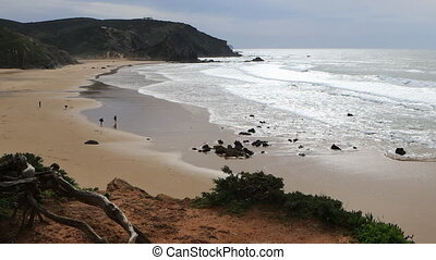 Beautiful beach with rolling waves