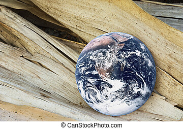 Dying Planet Earth