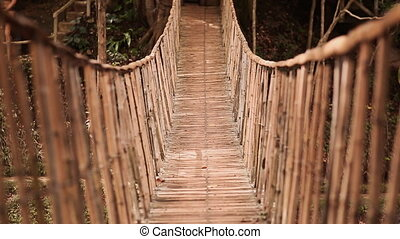 Bamboo hanging bridge over river in tropical forest, Bohol,...