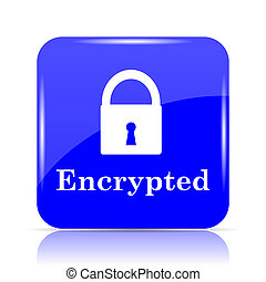 Encrypted icon, blue website button on white background.