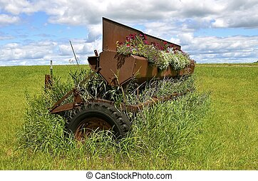 Old grain drill seed box full of flowers - An old grain...