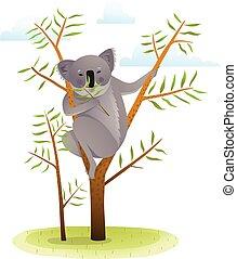 Koala on eucalyptus tree - Cute koala in nature eating....