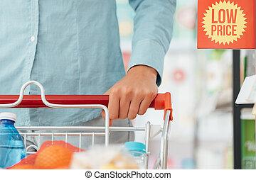 Woman pushing a shopping cart - Woman doing grocery shopping...