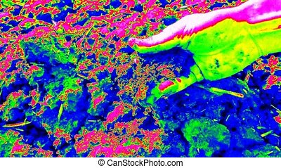 Thermography measurement. Hand looking for something in wet...