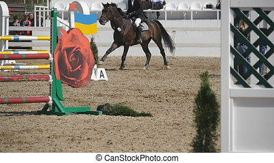 Horse runs and jumps through a barrier at sport competition. Close up of horse feet galloping. Professional jockey rides on horseback. Slow motion