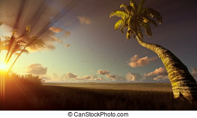 Tropical landscape, palm trees blowing in the wind at sunrise